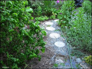 GardenPathsRoundCement2